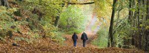wandelen vermindert stress